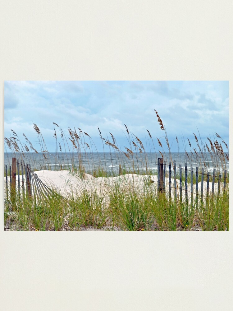 Alternate view of Storm Fence Photographic Print