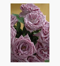 Lavender Roses Photographic Print
