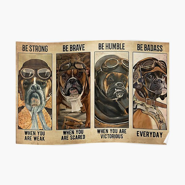 Boxer Dog Pilot Be Strong When You Are Weak Poster