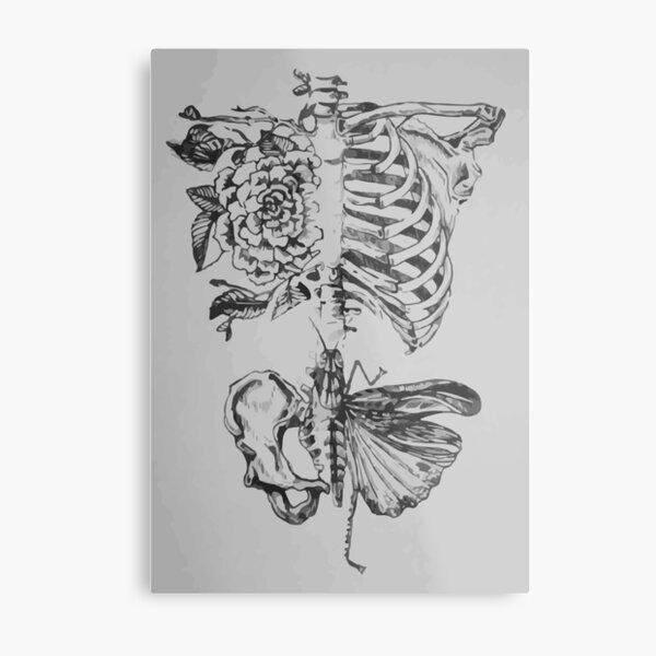Soft anatomy Metal Print