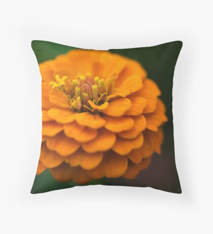 She wears a frilly frock in the summer Throw Pillow