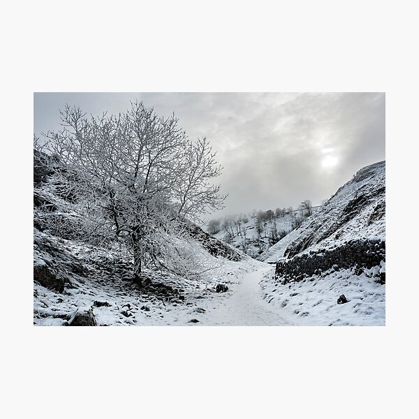 A Winters Walk Photographic Print