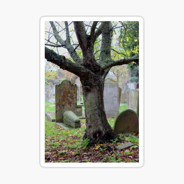 Oak tree and grave stones Sticker