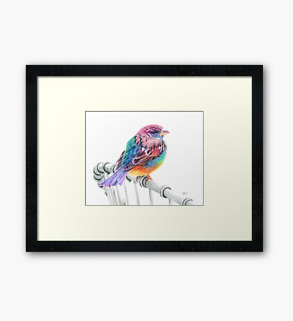 Touched by a Rainbow Framed Print