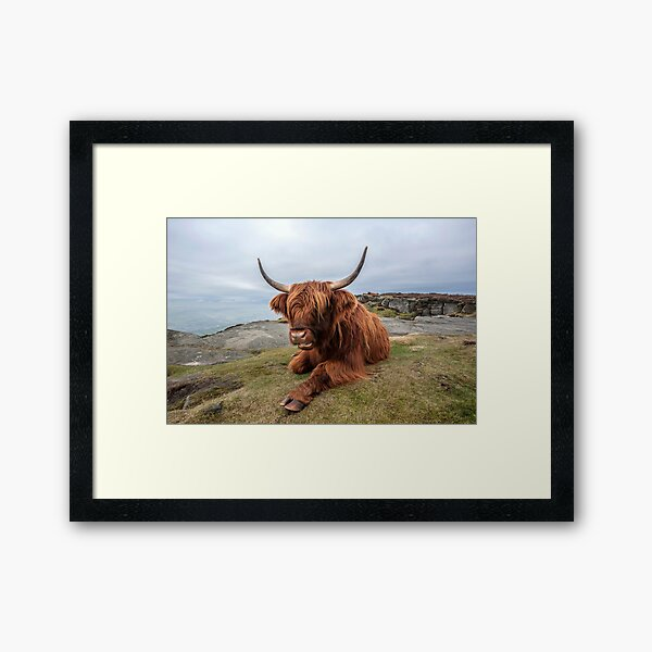 Chilling Out Framed Art Print