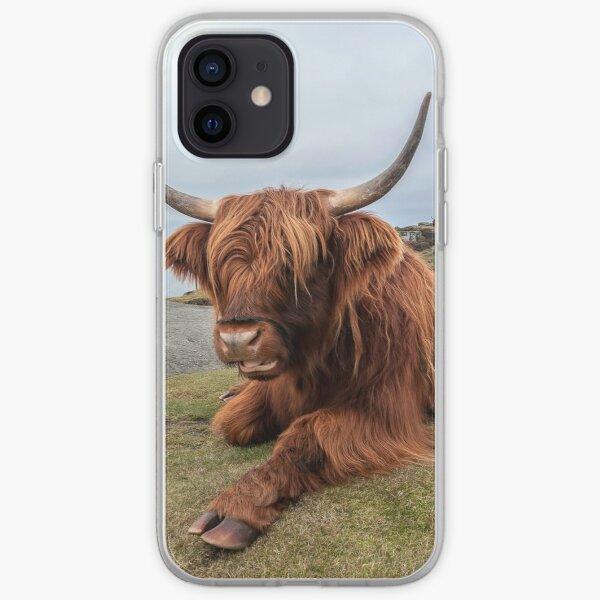 Chilling Out iPhone Soft Case