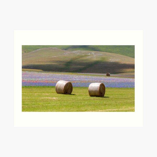 Hay bales in Castelluccio Art Print