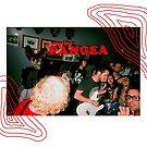 pangea by Catie Stewart