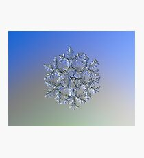 Gardener's dream (alternate), real snowflake macro photo Photographic Print