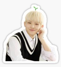 Woozi Sticker