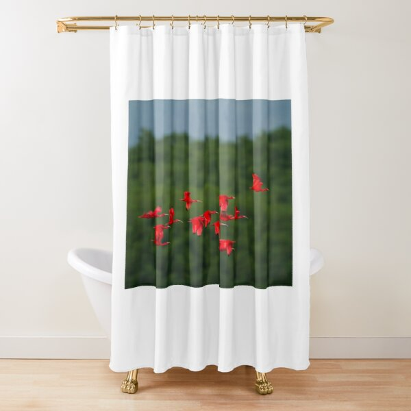 Flight of the Ibis Shower Curtain