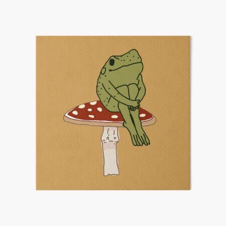 frog on mushroom  Art Board Print