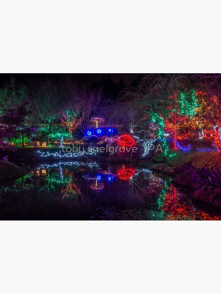 Japanese Gardens Mayne Island Christmas 5 by tobysnelgrove