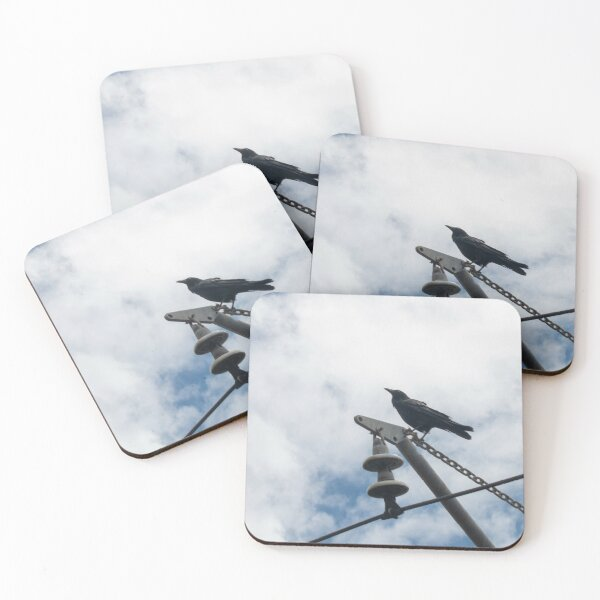 The Raven Coasters (Set of 4)
