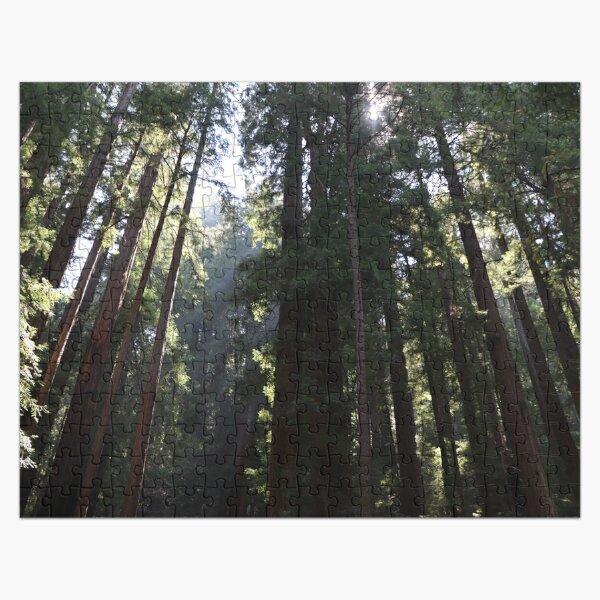 Finding Zen in Muir Woods Jigsaw Puzzle
