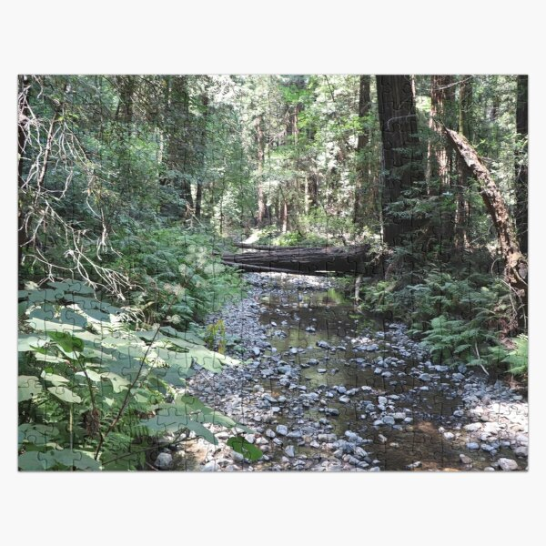 A Peaceful Creek in Muir Woods Jigsaw Puzzle