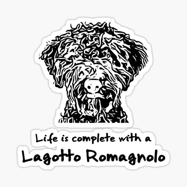 Lagotto Romagnolo Sticker
