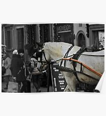 Florentine Horse and Cart Poster