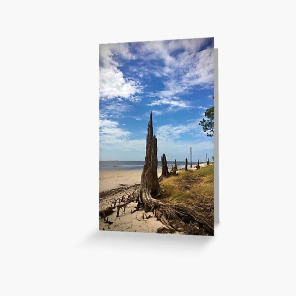 Forgotten Coast Greeting Card