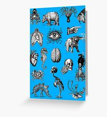 Cabinet of curiosities 2 Greeting Card