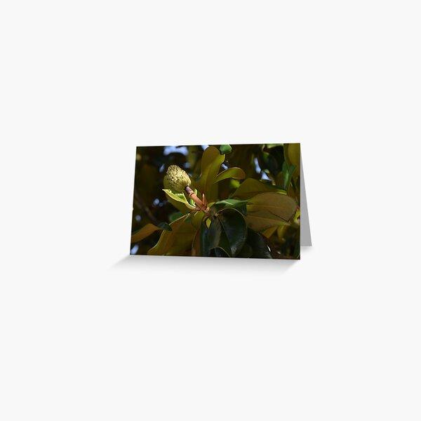 Magnolia Pom-Pom Greeting Card