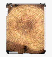 Inside a cypress iPad Case/Skin