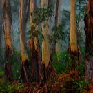 In The Mist - Mount Wilson and Mount Irvine NSW  - The HDR Experience by Philip Johnson