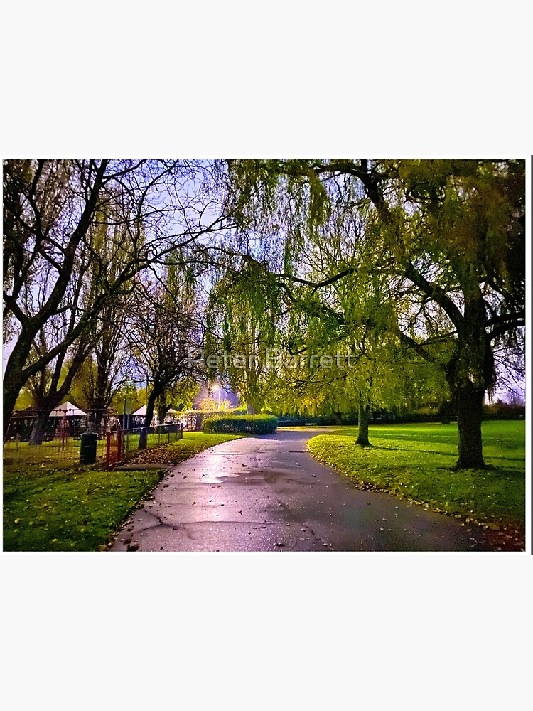 Hylands Park Path by hartrockets