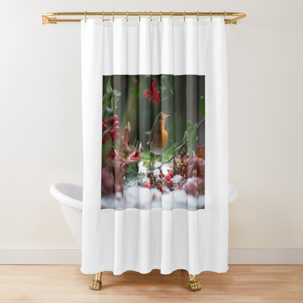 Robin Red Breast Shower Curtain
