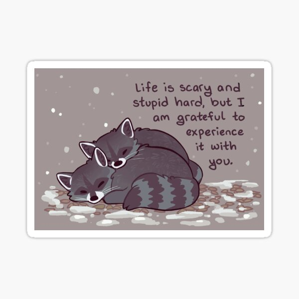 """""""I Am Grateful to Experience it With You"""" Snuggly Raccoons Sticker"""