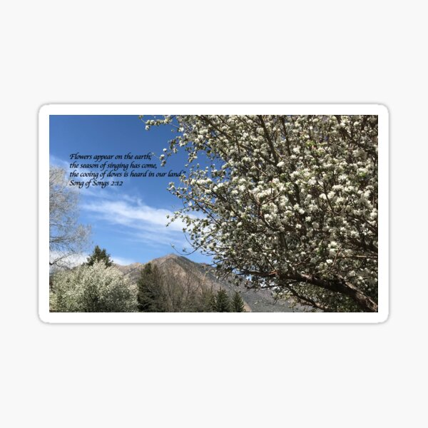Spring flowers with verse - From ccnow.info Sticker