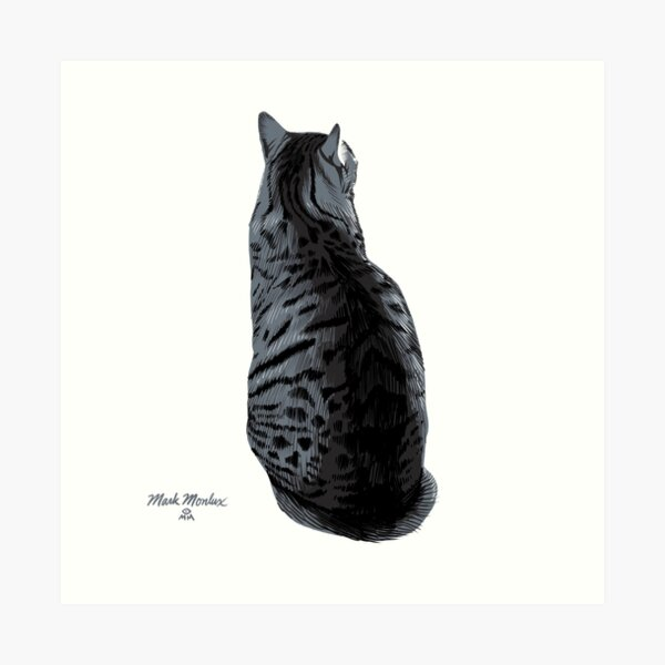 Cat #12 - Max Art Print