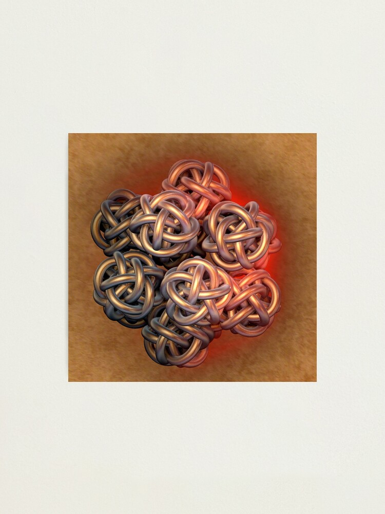 Alternate view of Gordian Knot  Photographic Print