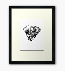 Nure- the dog Framed Print