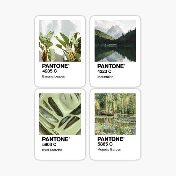 Pantone Green Pack Sticker