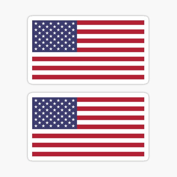 USA Flag ×2 Sticker