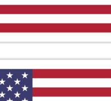 USA Flag ×2 Sticker