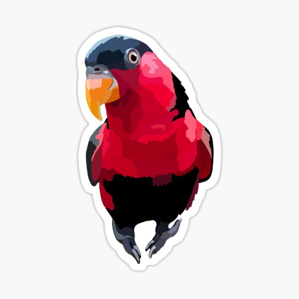 B is for Black capped Lory  Sticker