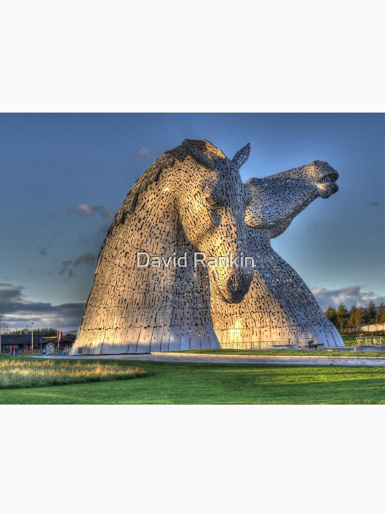 The Kelpies, Helix Park , Falkirk by goldyart