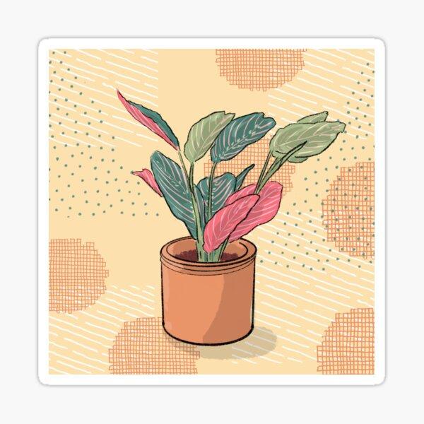 Maranta leuconeura tricolor - crazy plant person  Sticker
