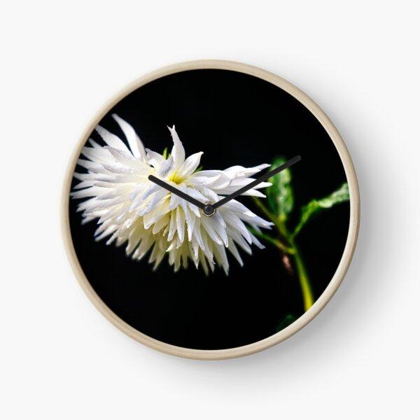 White flower Clock