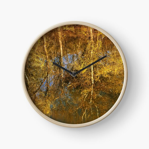 Reflection of trees in the river Clock
