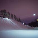 Purple Night - Oratoire St Joseph Montréal by jpvalery