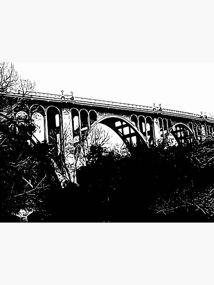 Colorado Street Bridge, Pasadena, California by douglasewelch