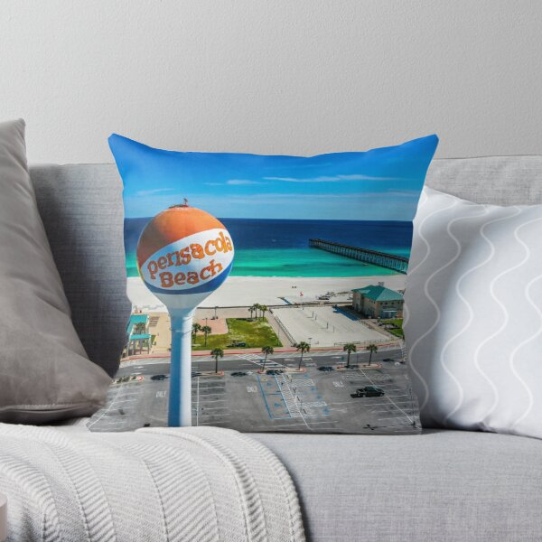 Osprey Perched on Beach Ball Throw Pillow