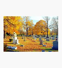 Autumn of our Lives  Photographic Print