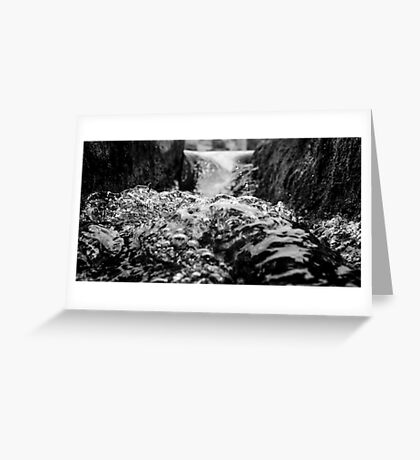 Rapid Transitions Greeting Card