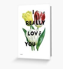 i really love you  Greeting Card