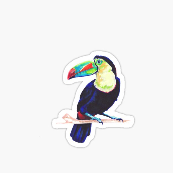 Toucan Sticker