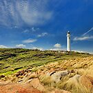 The Lighthouse at Hicks Point by Peter Doré